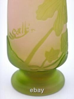 Emile GALLE vase Art Nouveau signé à l'étoile à décor de fleurs d'Iris 1904 1908