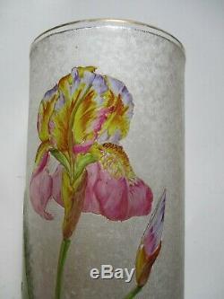 Exceptionnel Vase aux Iris dégagé à l'acide BACCARAT monture laiton Art Nouveau