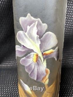 Montjoye Vase Art Nouveau Decor D Iris Émaillé Verre Givré