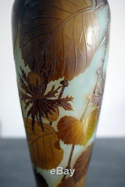 Superbe Et Authentique Vase Émile Gallé Époque Art Nouveau Decor De Noisettes