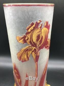 Superbe Vase Baccarat Gravé A Lacide Decor De Fleur Et Reflet Doré Art Nouveau