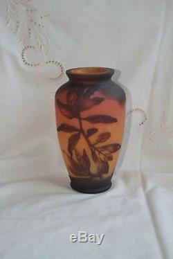Vase Art Nouveau Déco verre dégagé à l'acide décor végétal Gallé Daum Richard