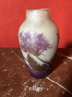 Vase Gallé Aux Fleurs Champêtres Dépoque Art Nouveau daum legras