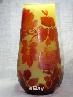 Vase Rosier sauvage émile Gallé 1846-1904 école d Nancy Art Nouveau verrerie