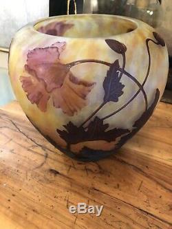 Vase daum nancy art nouveau Fleurs de Pavots XXL